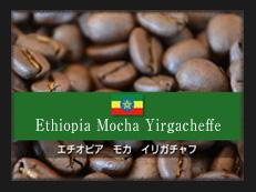 エチオピア モカ イリガチャフ